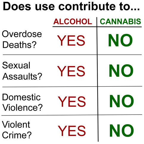 alcohol vs weed Whether alcohol or marijuana is safer is still up for debate, but experts agree the safest option is to avoid both drugs altogether.